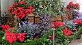 U.S. Botanic Garden at the Holidays (23965376216).jpg