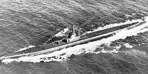 Flasher (SS-249) underway, c. 1944.