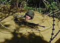 US Navy 070927-N-4267W-130 Steelworker 3rd Class Benjamin Hickok, with Naval Mobile Construction Battalion (NMCB) 7, traverses a mud-filled trench during a jungle warfare training evolution hosted by Marines with the Jungle Wa.jpg