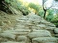 Ulia trail 0001.jpg