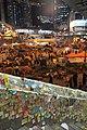 Umbrella Revolution (15842982497).jpg