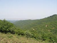 Upper Galilee 123.JPG