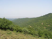 Upper Galilee 123.JPG