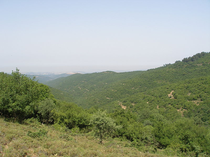 Mountains in the Galilee