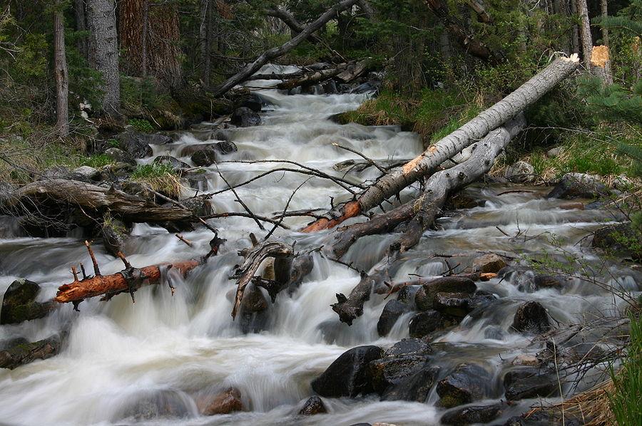 Upper Lehman Creek.jpg