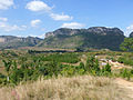 Vallée de Viñales-Paysage (8).jpg