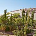 Valle de Jere-CTJ-IMG 5734.jpg