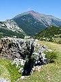 Valle del Aragón - WLE Spain 2015 (5).jpg