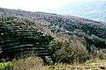 Valle del Jerte (1982) 03.jpg