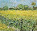 Van Gogh - Blick auf Arles mit Iris im Vordergrund.jpeg
