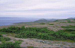 Varangerfjord - View of the fjord