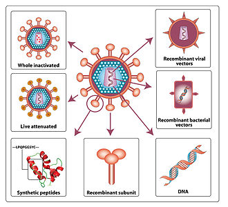 HIV vaccine - Various approaches for HIV vaccine development