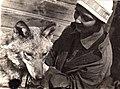 Vera Chaplina and wolf Argo.jpg