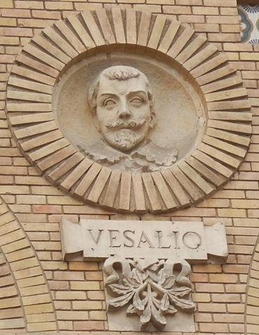 Archivo:Vesalio Paraninfo Zaragoza.JPG - Wikipedia, la enciclopedia ...