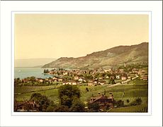 Vevey general view Geneva Lake Switzerland.jpg