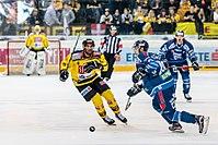 Vienna Capitals vs Fehervar AV19 -77.jpg