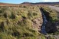 View along culvert - geograph.org.uk - 588709.jpg