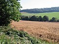 View along the Alkham Valley - geograph.org.uk - 577560.jpg