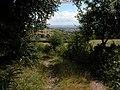 View east from track on Graig Syfyrddin - geograph.org.uk - 214224.jpg