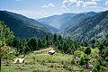 View from above Bikhi camping area on MKM trek.jpg