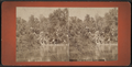 View in Prospect Park, from Robert N. Dennis collection of stereoscopic views 6.png