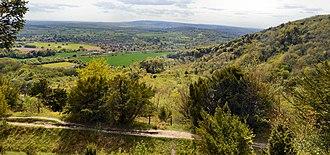 Surrey Wildlife Trust - Brockham Limeworks