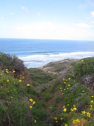 Torrey Pines State Natural Reserve - View on one of the trails at Torrey Pines State Reserve