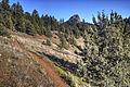 Views from Cascade-Siskiyou National Monument (18358885212).jpg