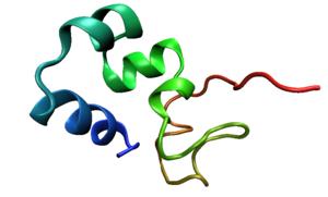 Villin - The helix bundle in the headpiece domain of chicken villin.
