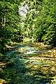 Vintgar Gorge (35680766871).jpg