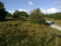 Vlakte van Waalsdorp (Waalsdorpervlakte) 2016-08-10 img. 540.png