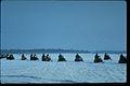 Voyageurs National Park VOYA9533.jpg