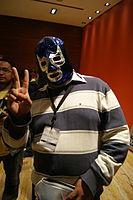 WM2015mascara ohs27.jpg