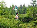 W rejonie szczytu Buza Serbii (1530) http-perister-wyrypy.blogspot.com - panoramio.jpg