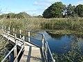 Walkway to Island Hide, Westhay Moor Nature Reserve (geograph 2652348).jpg