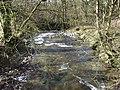 Wamphray Water - geograph.org.uk - 353769.jpg