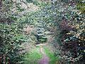Wanderweg - panoramio (127).jpg