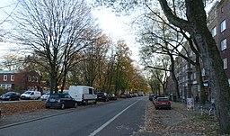 Washingtonallee in Hamburg-Horn