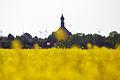 Wesselburen church seen from schuelp 11.05.2011 14-49-36.JPG