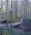 Whiteway Wood - geograph.org.uk - 321188.jpg