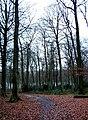 Widow Croft, Oak Lane, near Brazier's End - geograph.org.uk - 106785.jpg