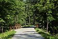 Wien-Hietzing - Naturschutzgebiet 1 - Lainzer Tiergarten - Brücke über den Rothwassergraben.jpg