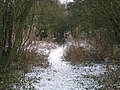 Wintry Track - geograph.org.uk - 1629767.jpg