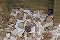 Worms juedischer Friedhof Heiliger Sand 011 (fcm).jpg