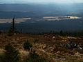 Wrzosowiska gór Izerskich widziane z góry.jpg