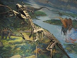 Zigong - Sinraptor at the Zigong Dinosaur Museum