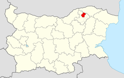 Zavet Municipality within Bulgaria and Razgrad Province.
