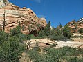 Zion National Park - panoramio.jpg