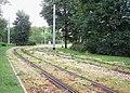 Zwickau-lawn-track-variation.jpg