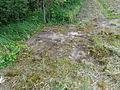 's-Graveland Vreelandseweg Restant Tankversperring.JPG